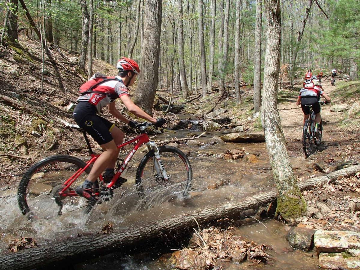 Five2ride Mountain Bike Trails In Virginia Singletracks Mountain