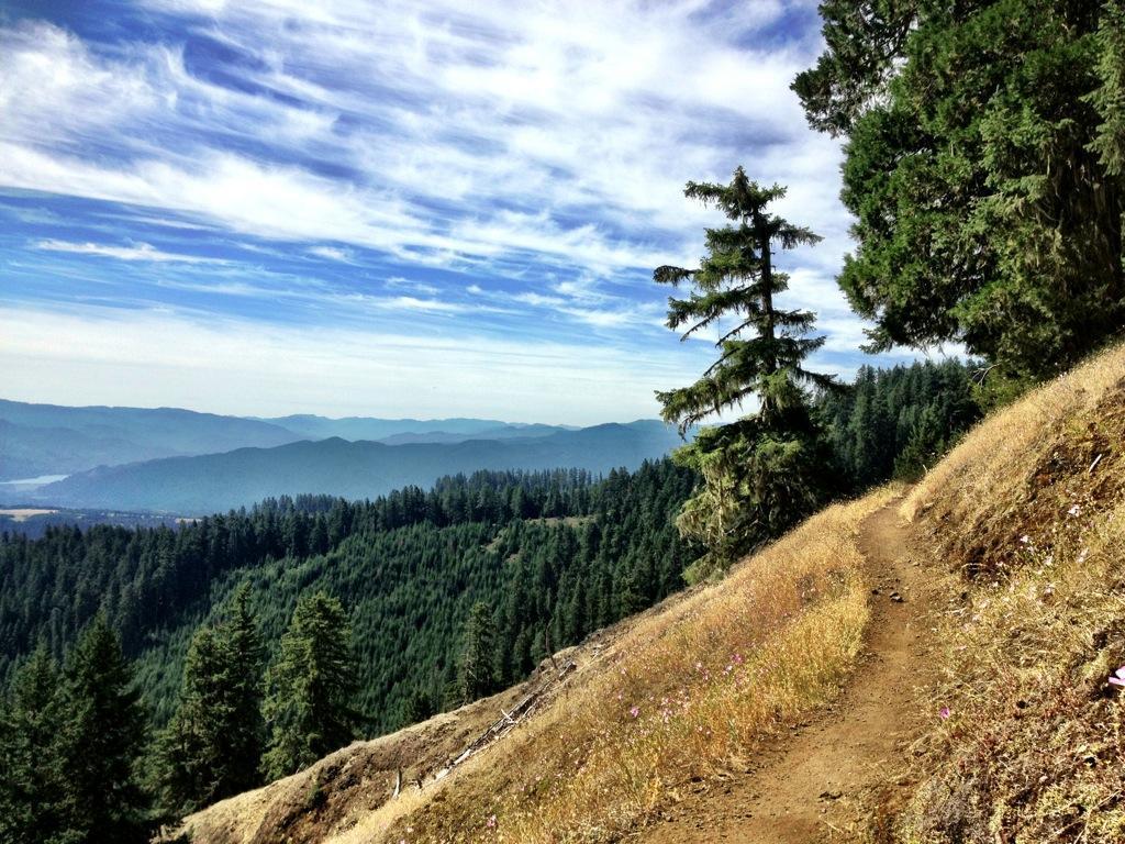 The Alpine Trail. Photo: Greg Heil