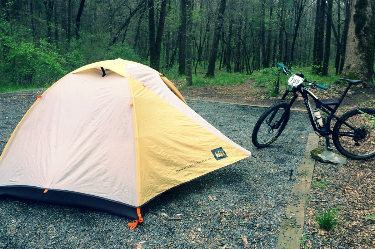 Campsite in a rainforest: my first-come-first-serve primitive campsite on Avery Creek Rd.