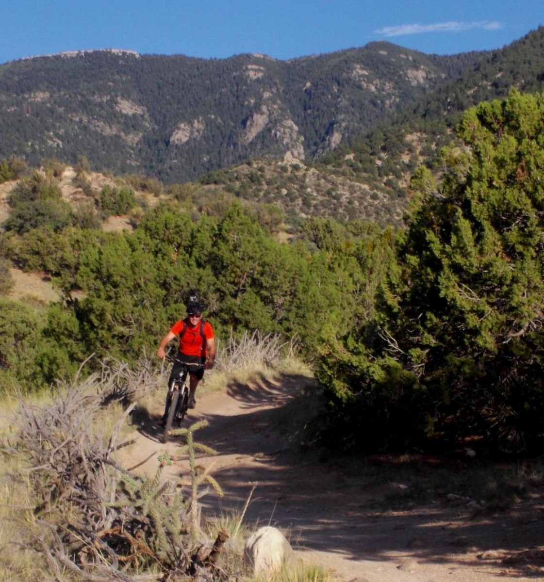 The more adventurous novice will find much to like in Albuquerque's Foothills. (photo: mcreel)