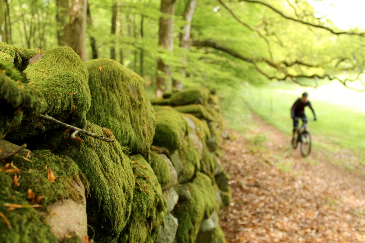 Riding past ancient stone walls in the Rada area. Rider: Leo Ranta. Photo: Greg Heil.
