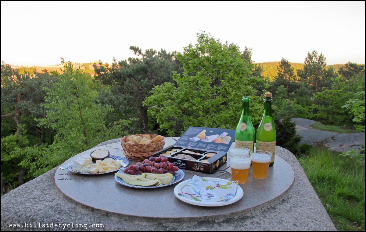 An evening picnic in Slottskogen. Photo: Natasja Jovic.