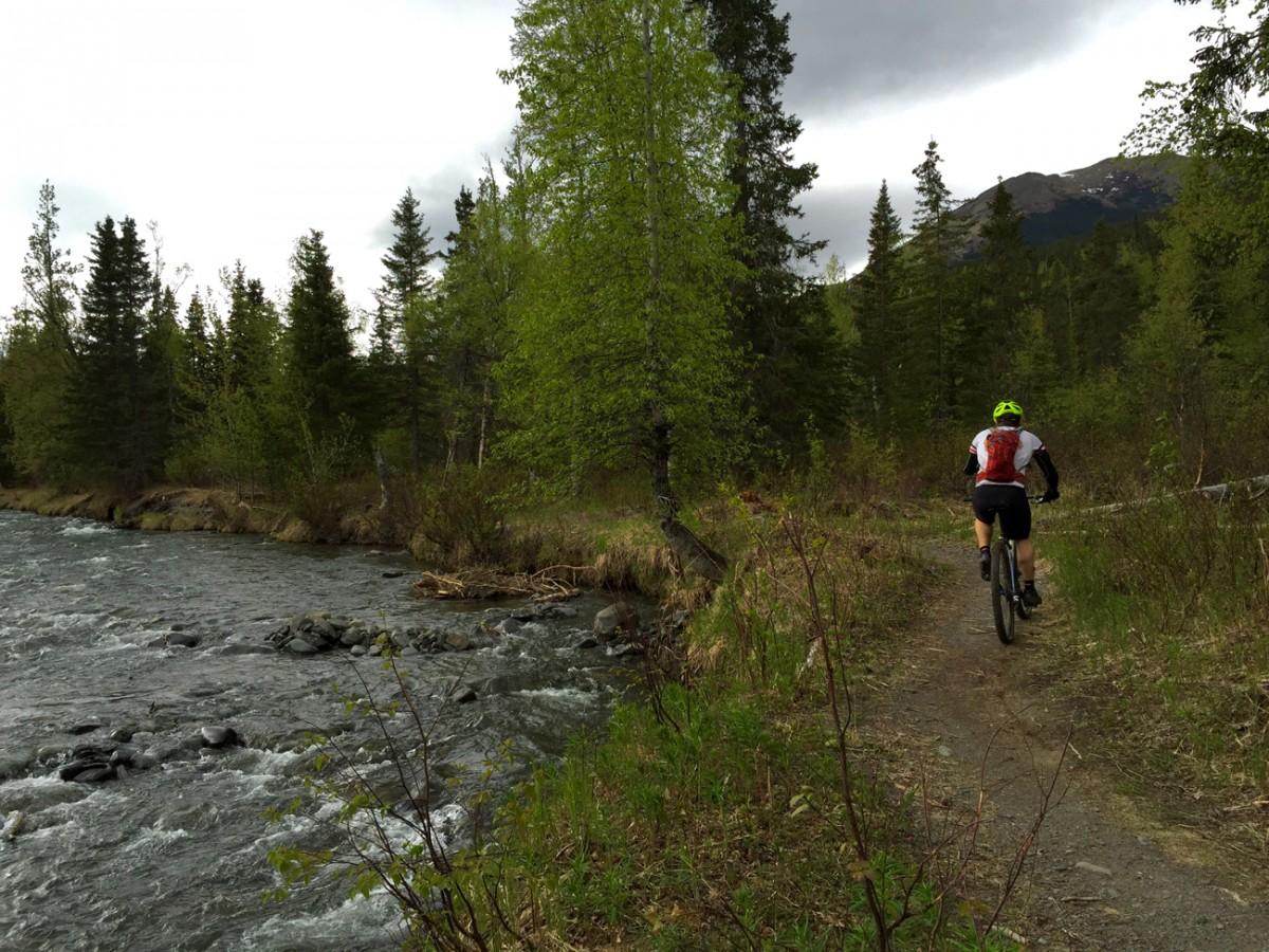 Cruising along the creek