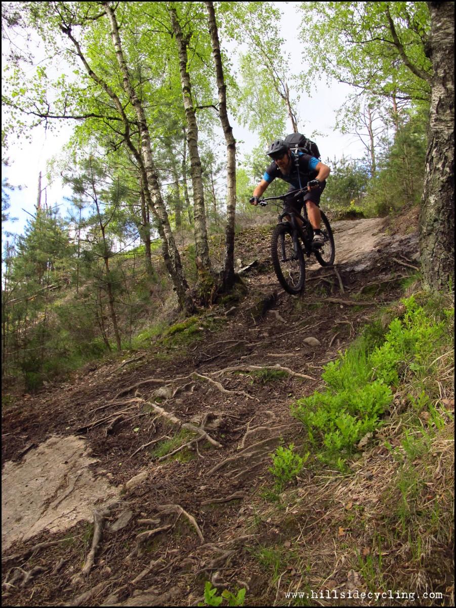 When the trail turns downhill, the descents are SO GOOD! Rider: Greg Heil. Photo: Leo Ranta.