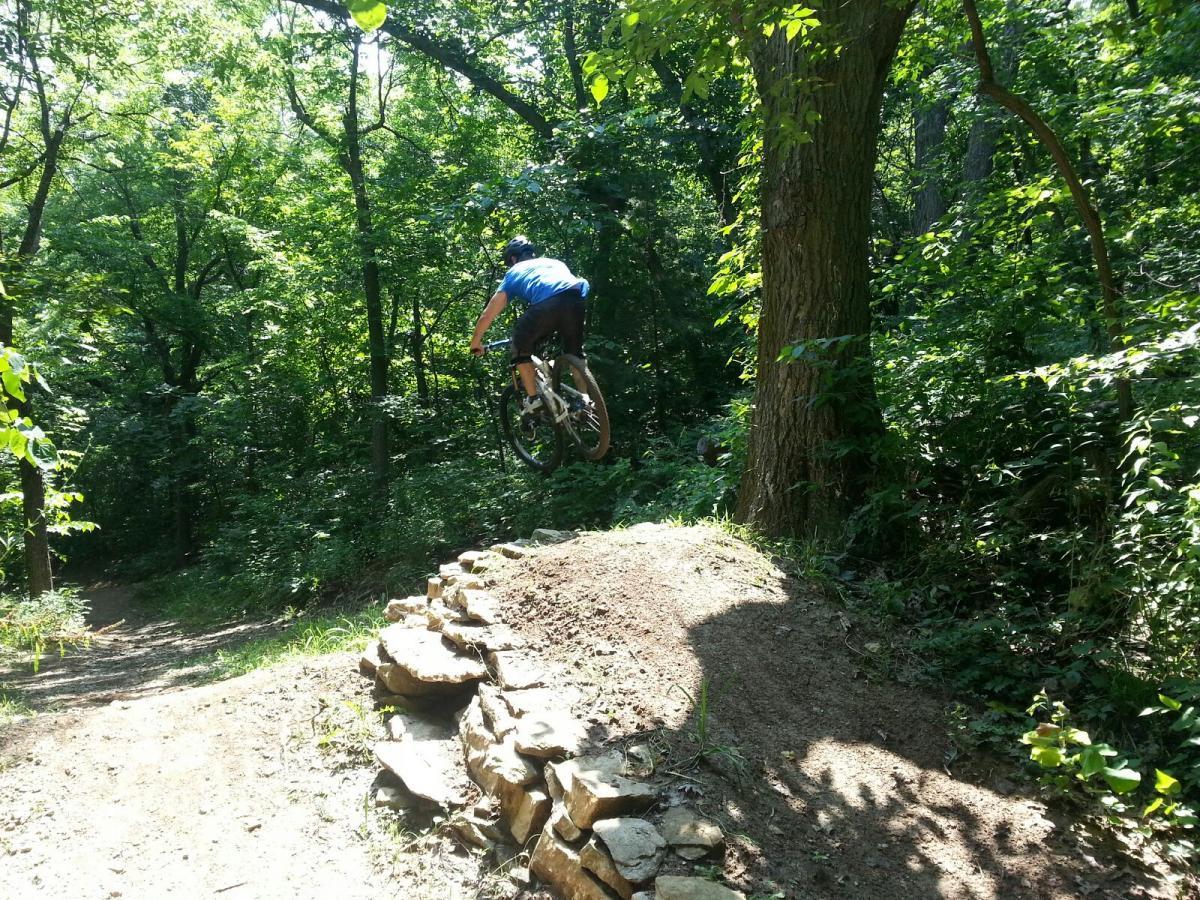 Jumps at Landahl Park Reserve. Photo: A_Day_2_Remember