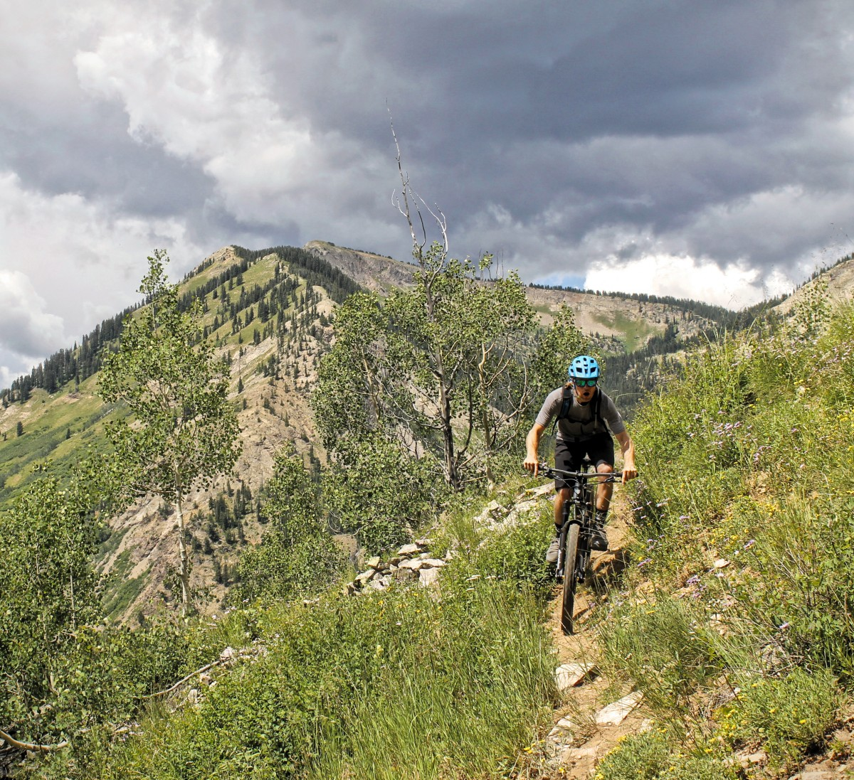 Rider: Dan Dacko