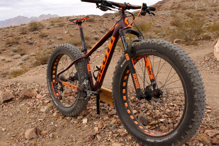 Ten Reasons Why a Fat Bike Should be Your Only Bike ... |Fat Bike