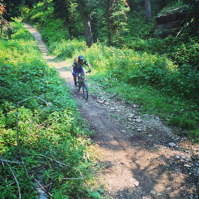 Dropping down the Mill Creek Trail. Rider: Greg. Photo: Mitch.