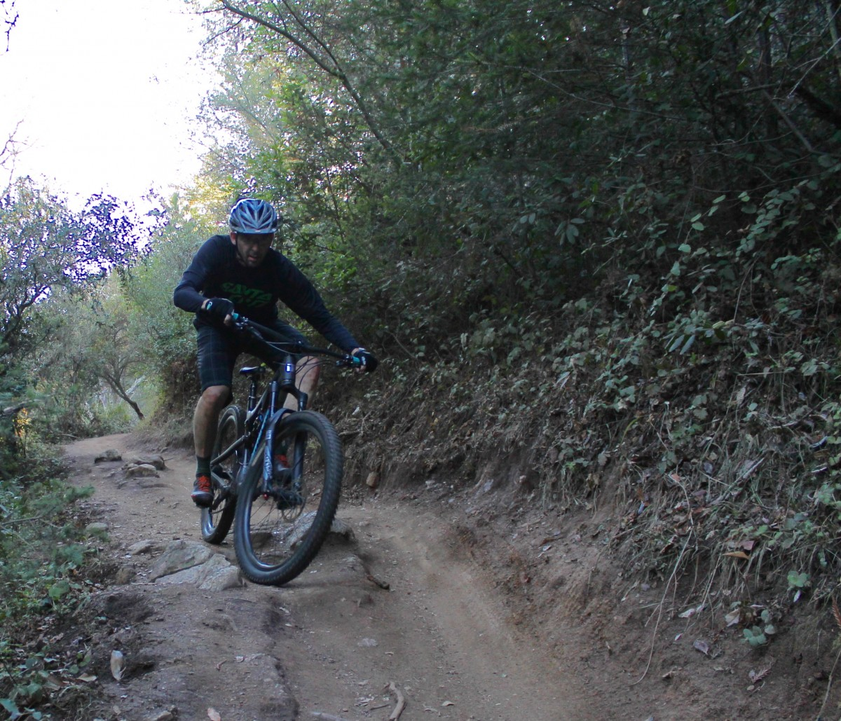 Rider: Don Palermini