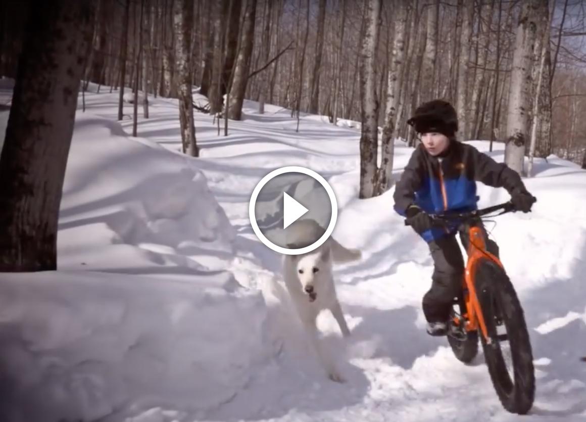 Screen Shot 2015-11-05 at 4 dog fat bike snow