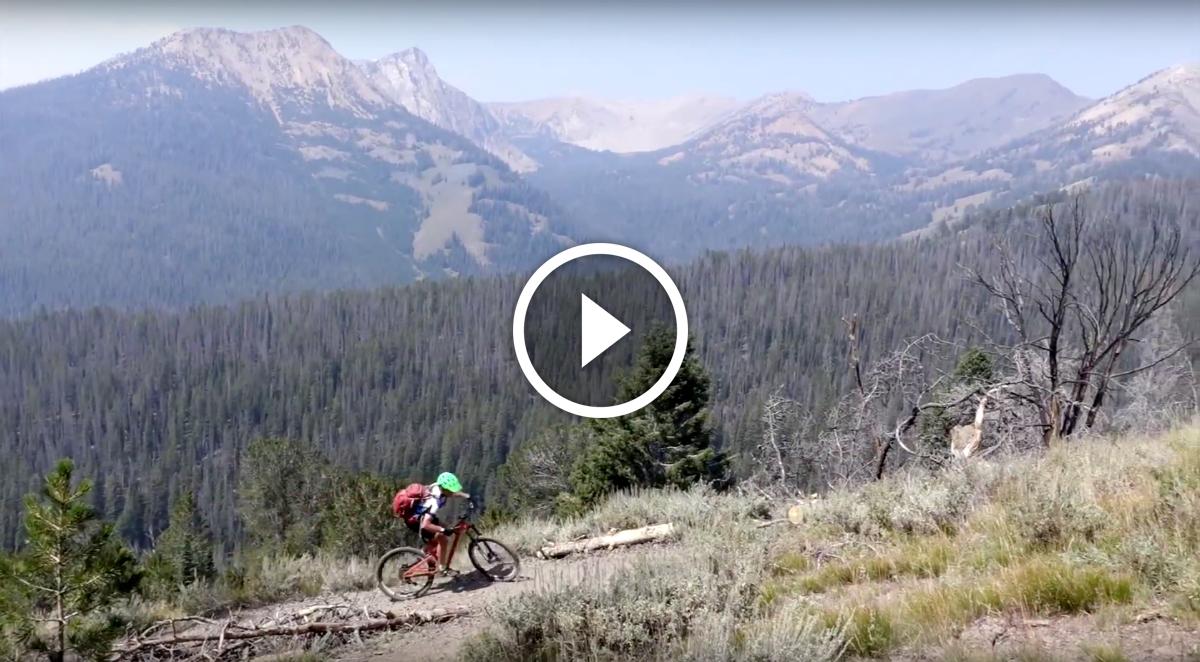 Screen Shot 2015-11-19 at 10 wilderness