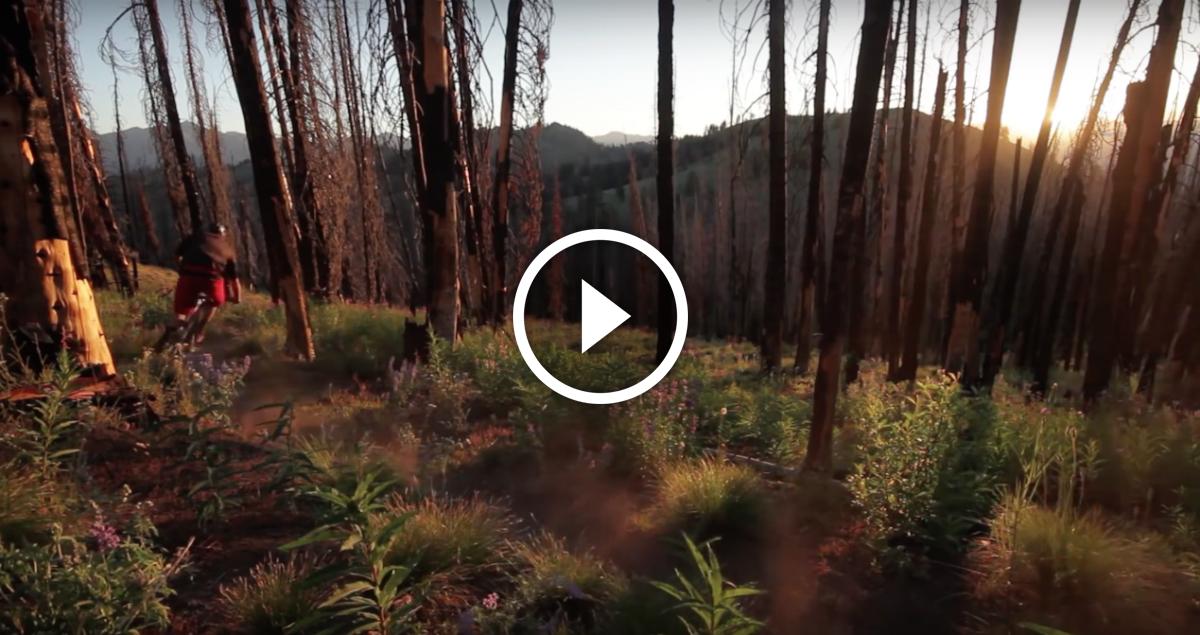 Screen Shot 2015-11-24 at 10 trail hunter sun valley