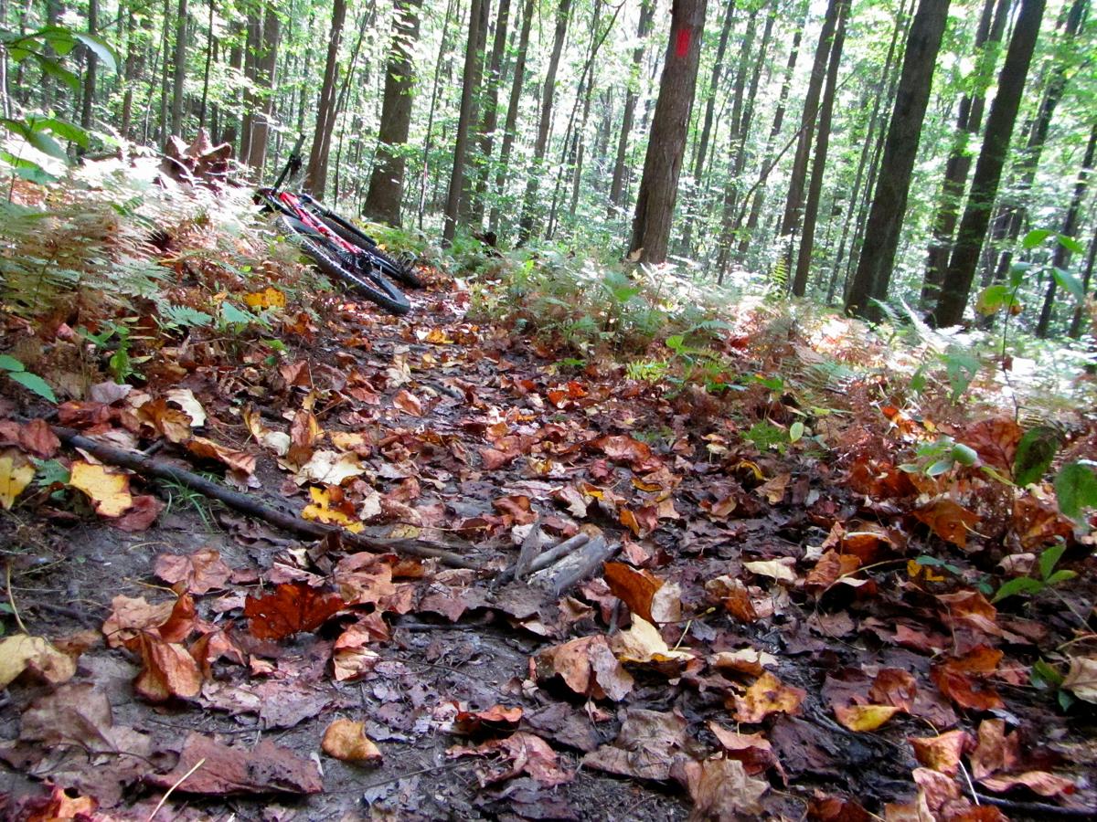moraine-trails