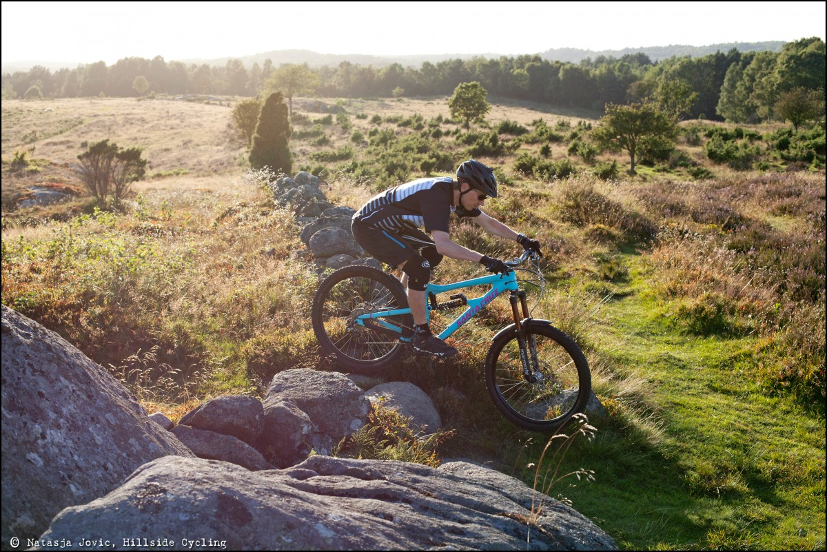Riding over the ancient stone fence at the heather moorlands in Sandsjobacka, south of Gothenburg.