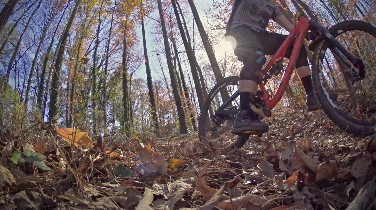 Leaf surfing on my local trails
