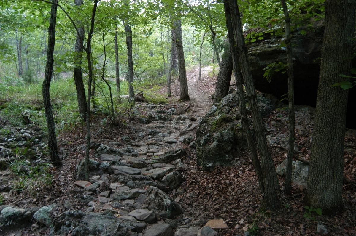 Forest City Trail. photo: CFM