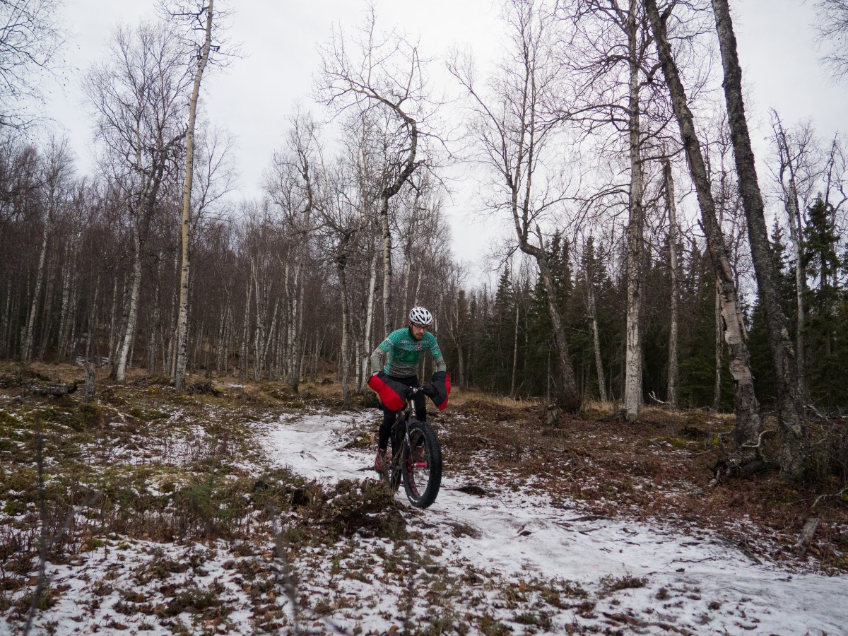 Out in Anchorage's forests for a more leisurely ride