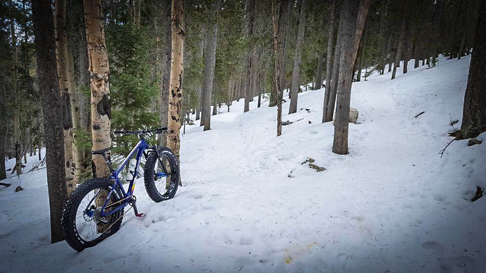 Riding a fat bike deep in the woods is one of the most peaceful things you can do in winter