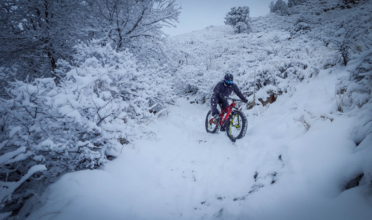 Who says the Bucksaw can't handle the snow? This bike is ready for anything!