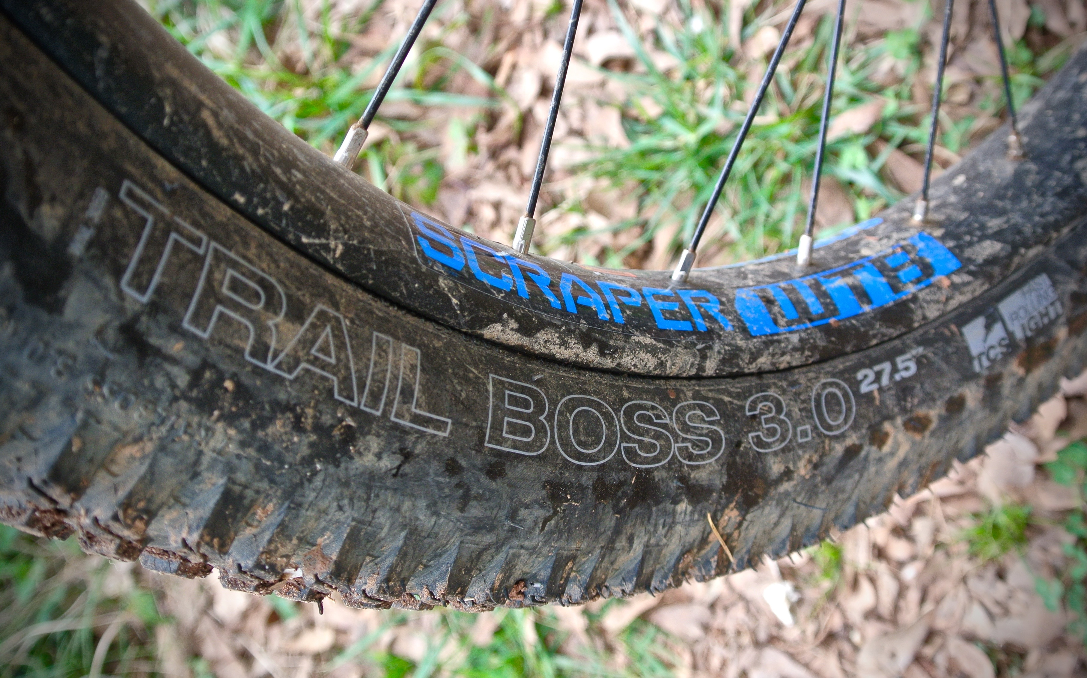 Wtb Trail Boss 3 0 27 5 Plus Tire Review Singletracks Mountain