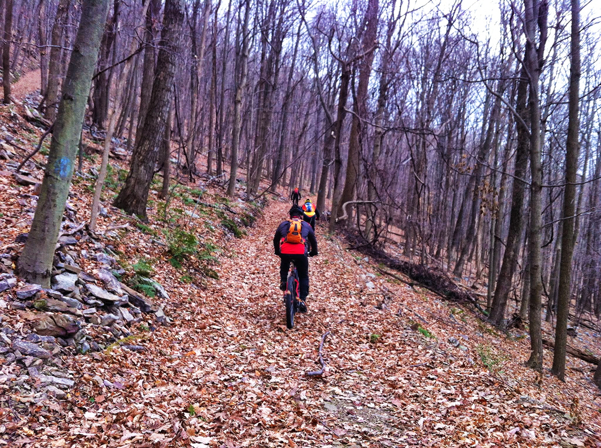 Riding the Terrace Mountain Trail.