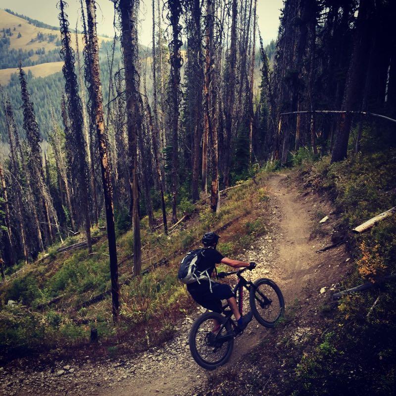 Mountain biking in the Bitterroot National Forest. Photo: ridethetetons