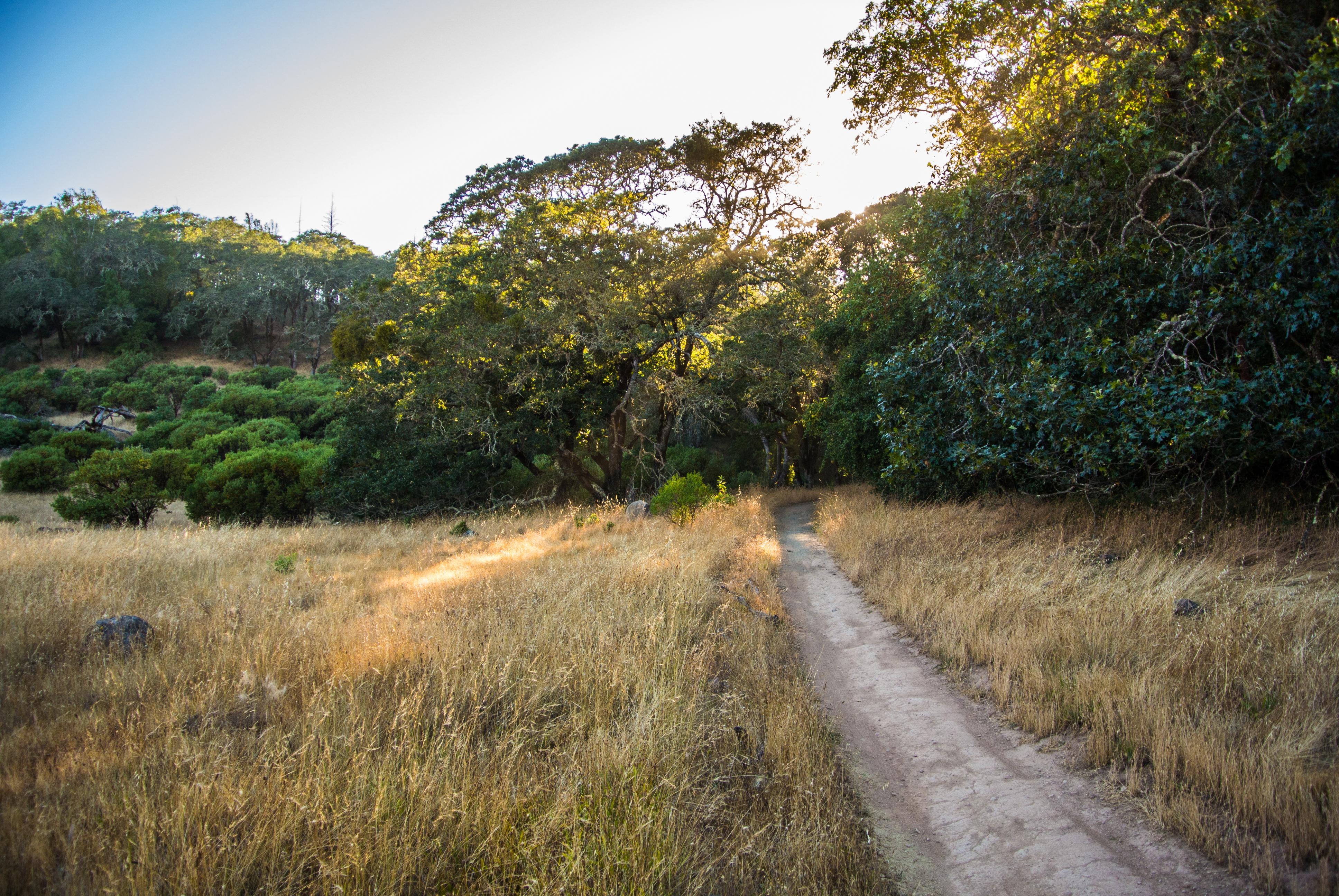 Exploring Wine Country Santa Rosa California