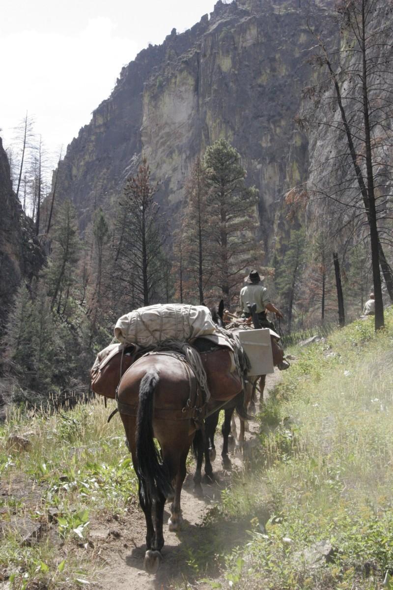 Horsepack