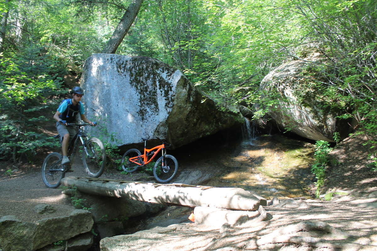 Junior crosses the bridge by a small waterfall on the Palmer/Section 16 loop.