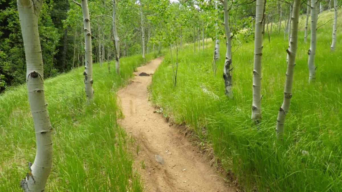 A rare calm stretch on the Pipeline downhill route (photo: RoadWarrior)