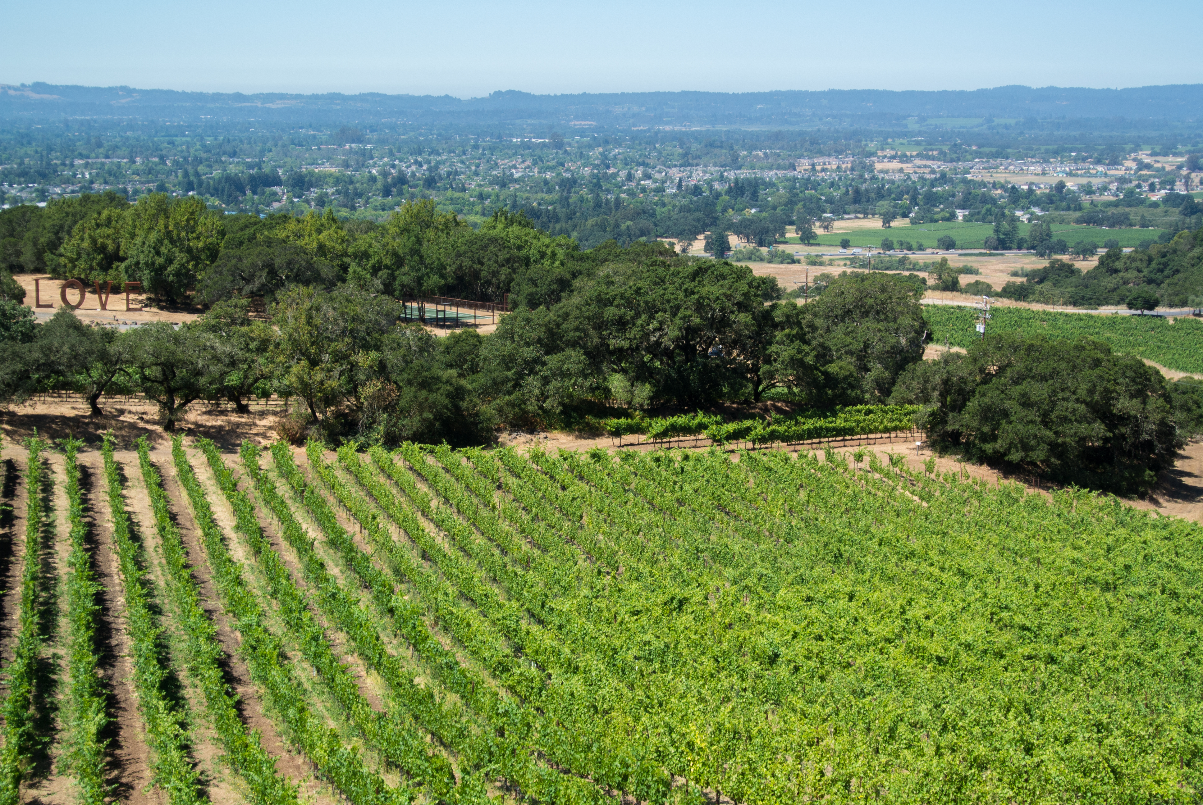 Exploring Wine Country Santa Rosa California Page 2