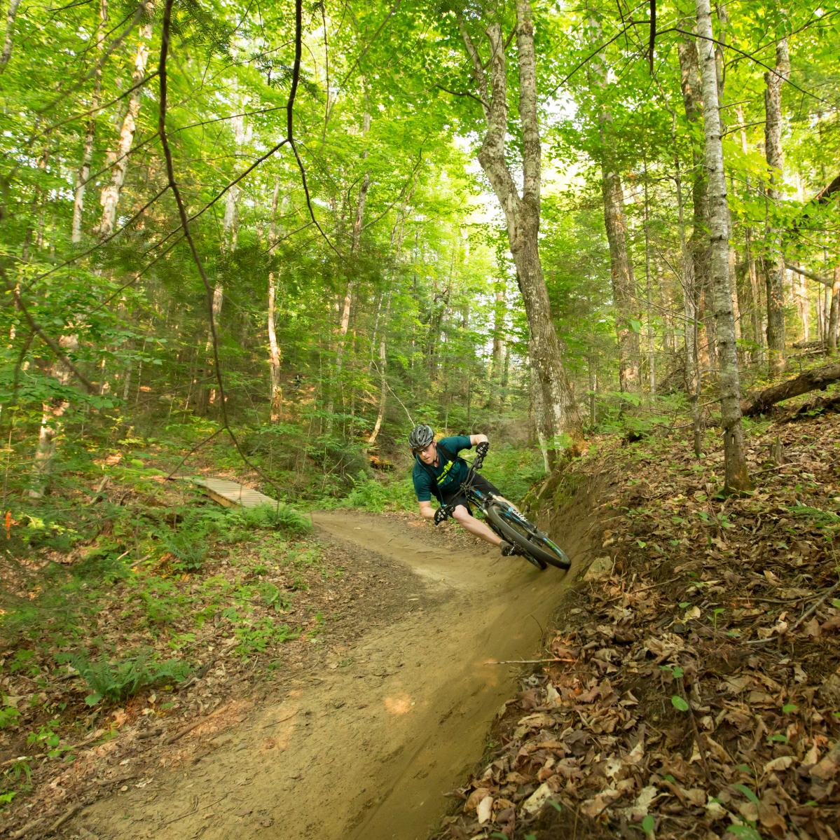 I have zero singletrack time in New England, so I'd love to hit the likes of Vermont's #1, The Kingdom Trails (photo: Rob Whelan)