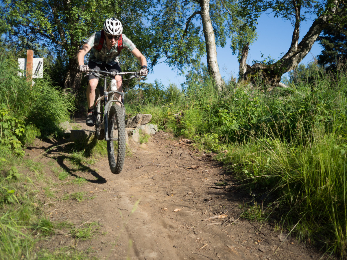 Dropping into the jump trail on a fatbike - required work for a comprehensive review