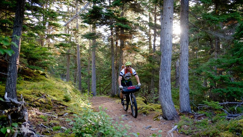 Riding through the Boreal forest, fully-loaded. Photo credit : Michael Braun