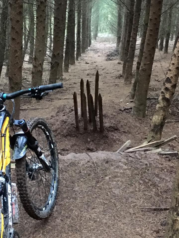 Photo: Twelve50 Bikes