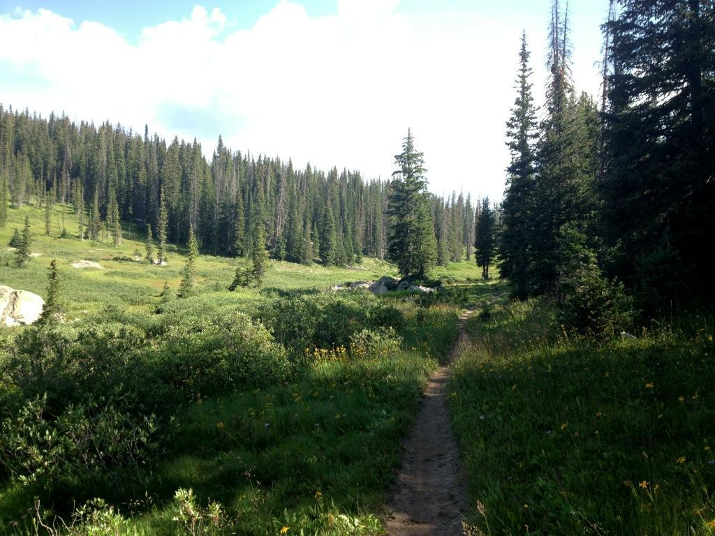 The trip from Rabbit Ears Pass to Buffalo Pass was beautiful (photo: Greg Heil)