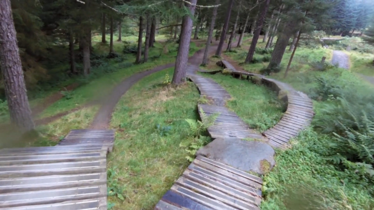 Glentress Trail System, Orange trail. Photo: DMBinS