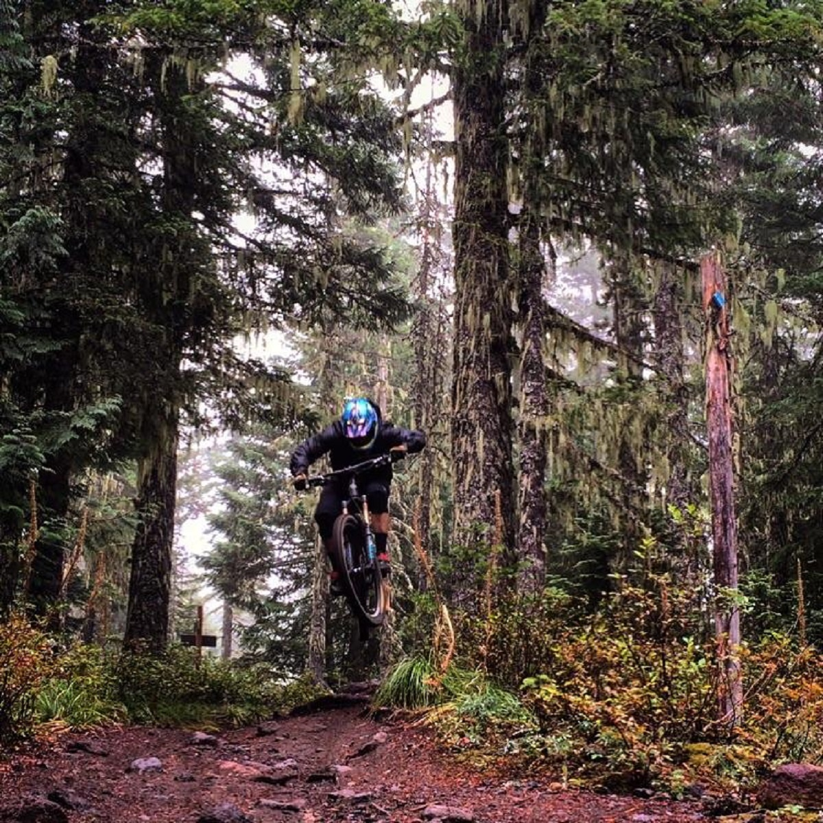 Grabbing some air on the Timberline to Town Trail (photo: Chris Daniels)