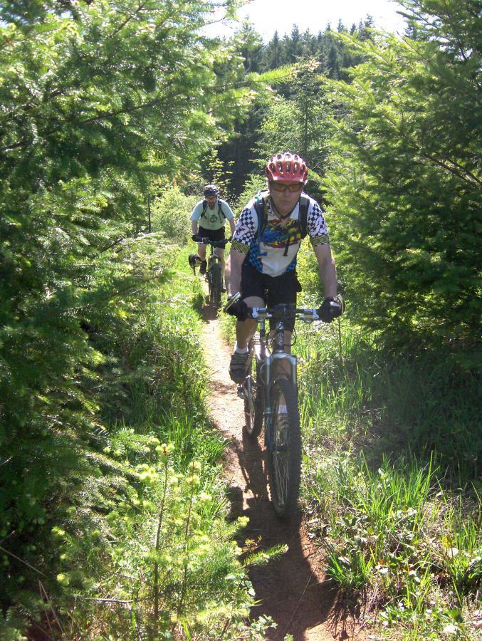 Mcdonald / Dunn Forests
