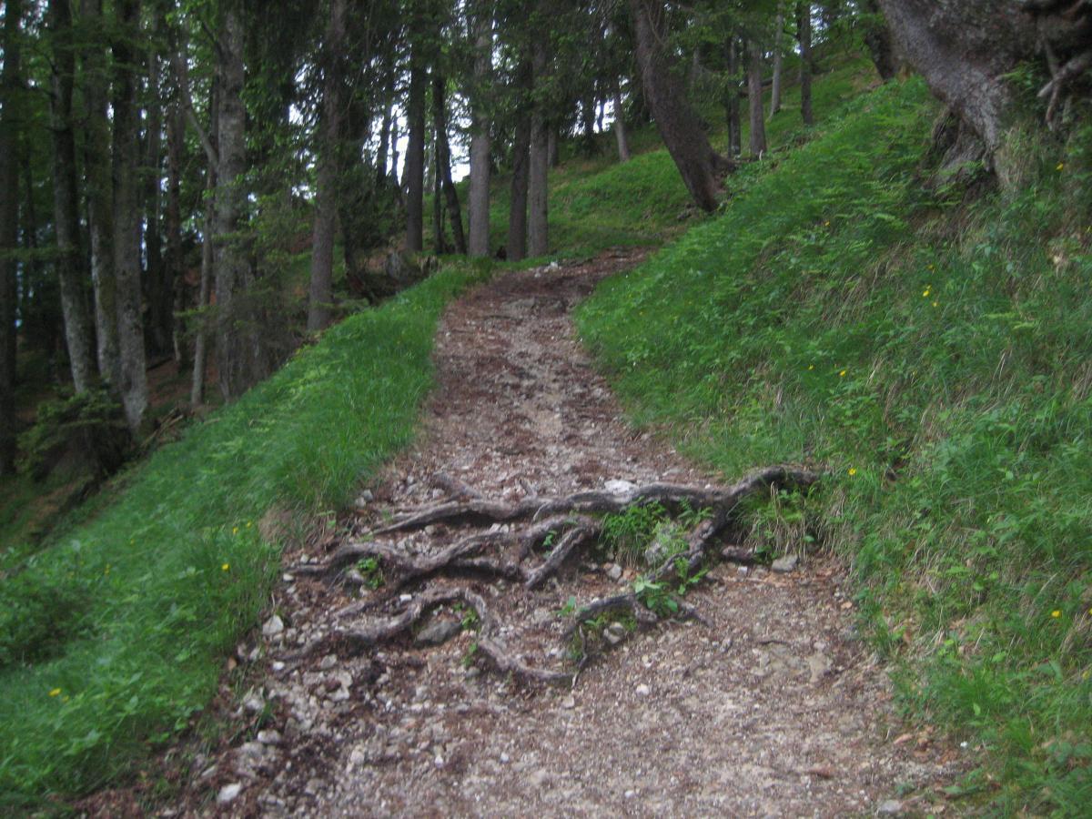 Kramer Plateauweg