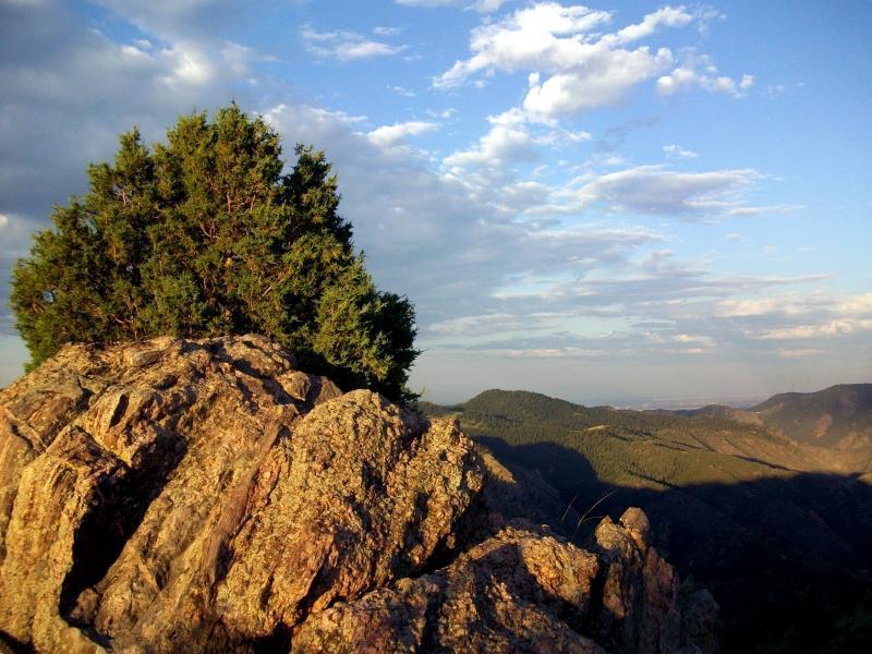 Centennial Cone Park Mountain Bike Trail In Idaho Springs