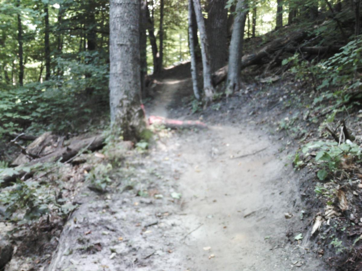 Whitetail Ridge
