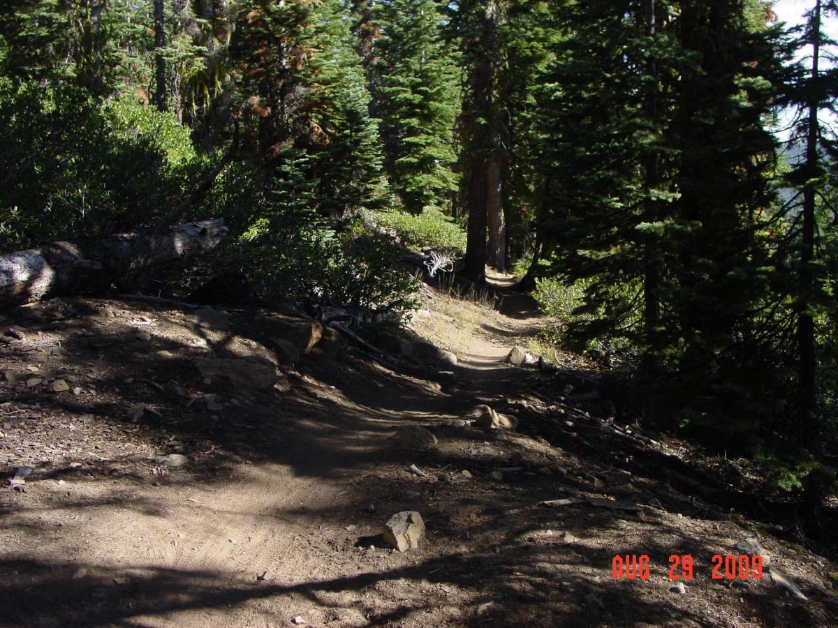 Tahoe Rim Trail: Brockway Summit to Watson Lake