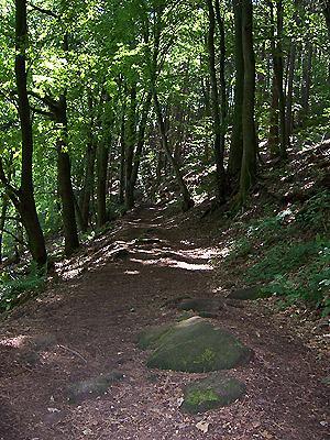 Nothweiler Burgruine Loop