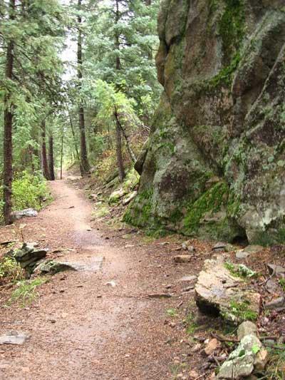 Dedisse Trail