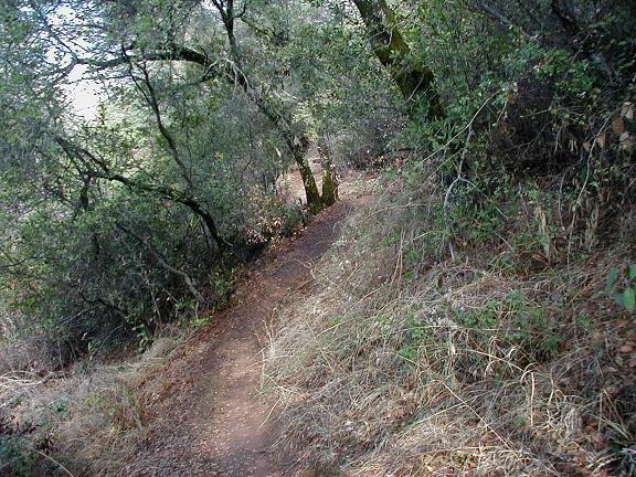 Sweetwater Trail