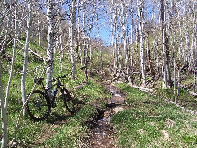 Wardsworth Creek