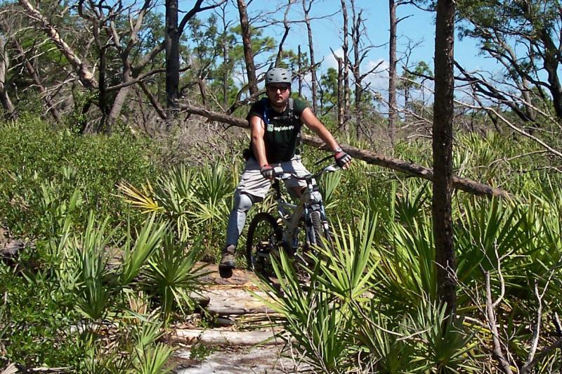 Wickham Trails