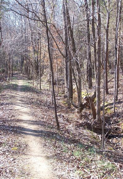 Sherman Branch Park Mtb Trail