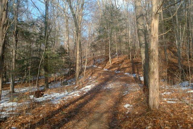 Upper Paugussett State Forest